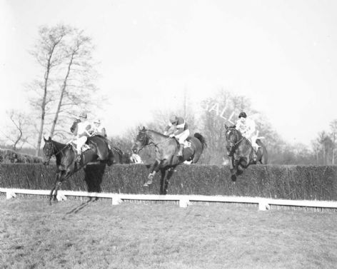 Racehorse Pointsman with Jockey R Morrow